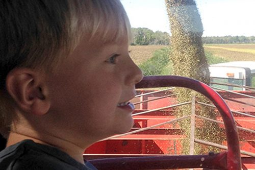 Young family member of Battle River Wild Rice while harvesting